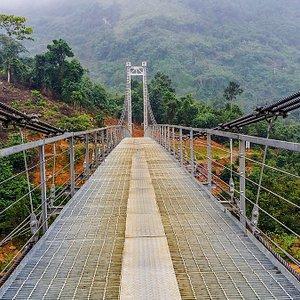 Bridge by the river