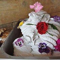 provenza:crema alla vaniglia e lavanda con salsa ai frutti rossi