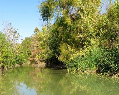 Friar's Creek at the trailhead