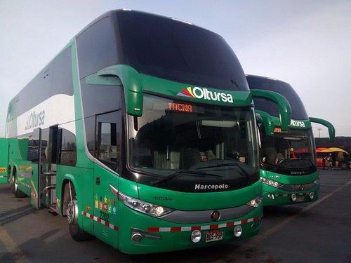 Los hermosos buses de Oltursa