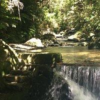 walkway through the stream