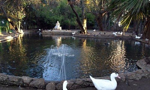 Estatua y estanque