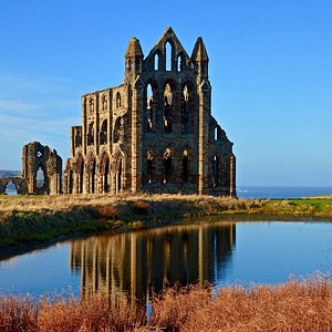 Reflections in the abbey pond.