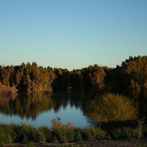 El Rio Preserve, Marana, AZ