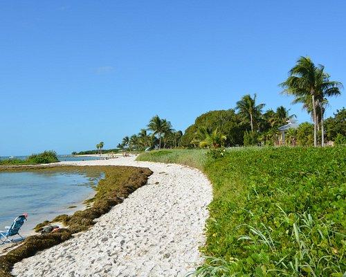 Beautiful Sombrero Beach in The Florida Keys
