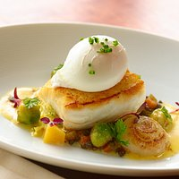 Halibut with Poached Egg