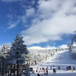 滑雪場奇美