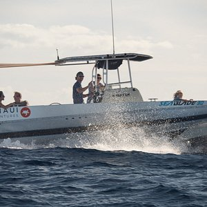 Blue Maui Ocean Adventures