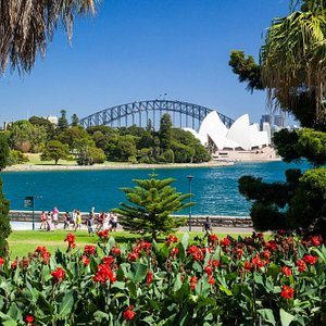 Beautiful view of Harbour Bridge & Opera House from Royal Botanic Gardens -seen on Private Day T