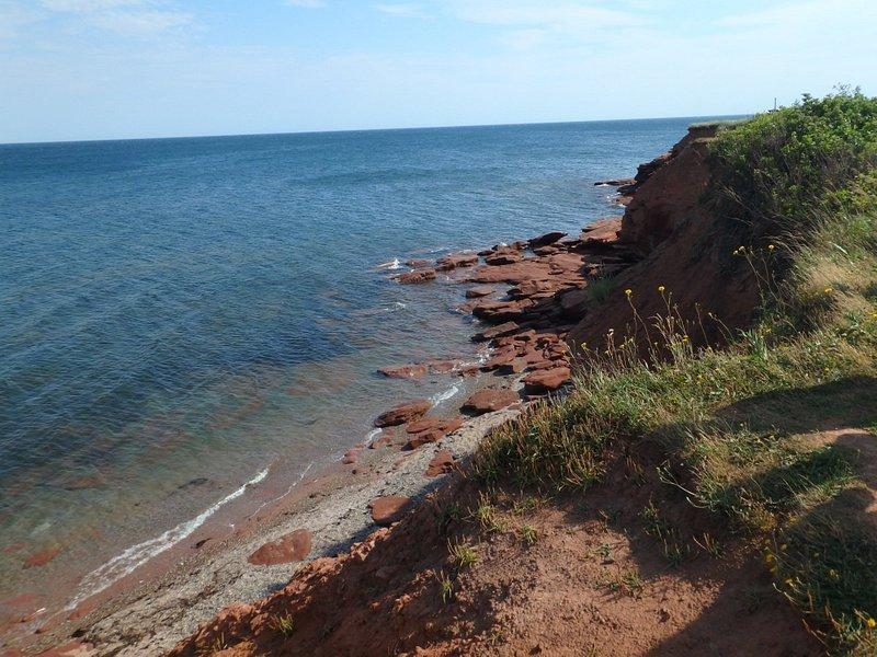 赤土の海岸