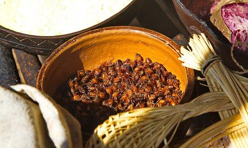 se quiserem, formigas assadas, uma iguaria