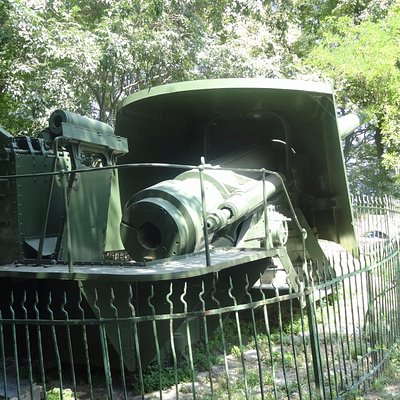 Large costal defence gun going to waste