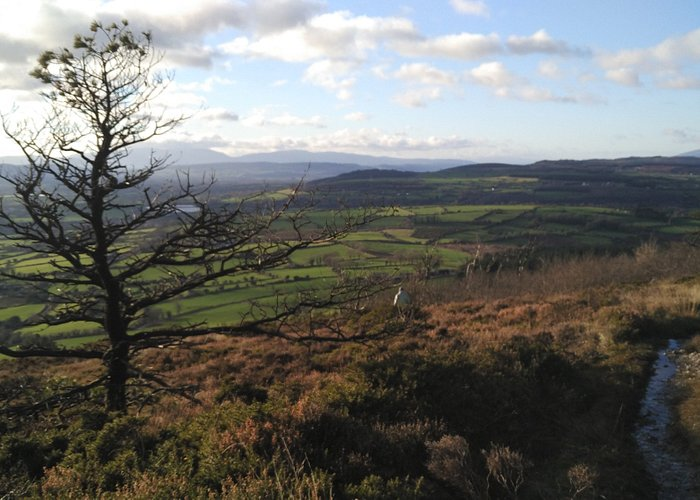 halfway down looking back towards Comeraghs and Suir Valley