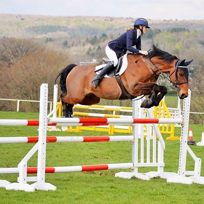The Best Summer Equestrian Venue In The UK
