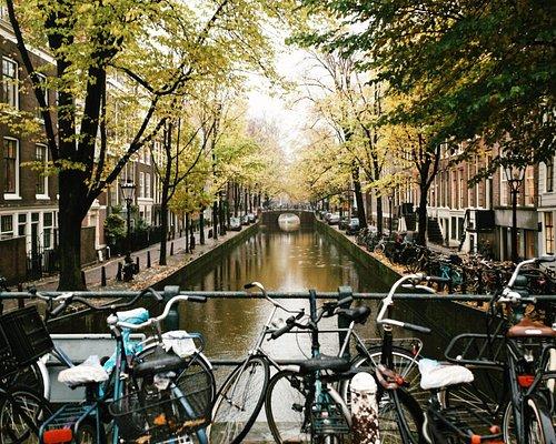 Amsterdam Historical Walking Tour 13
