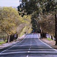 Lyndoch Main Street and Bike path