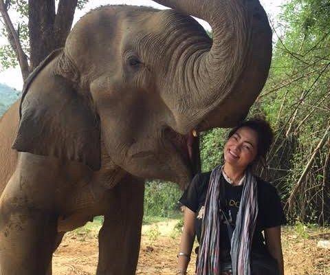 @Elephants'home and Nature