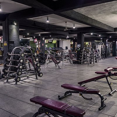 5th Ave. Evolve Gym