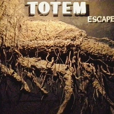 Totem escape room BARCELONA.              Las profecias del bosco