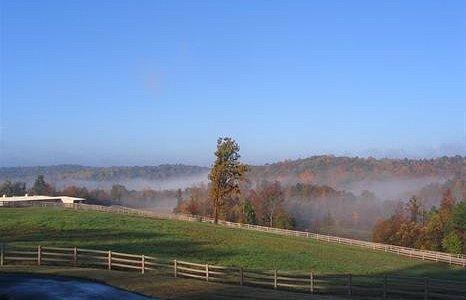 Morning at River Grove Ranch