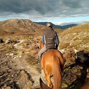 Horseback Riding in Gerês