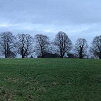 Evington Park