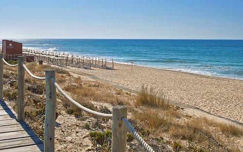 Hotel Beach Concession
