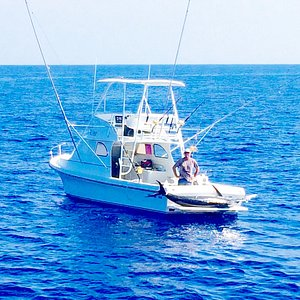567 lb Blue Marlin on the new Cherry Pit (32' Force)