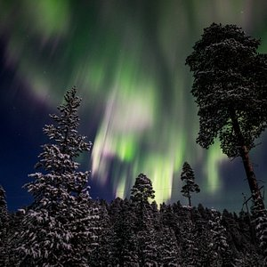 Northern Lights Dec2016 from our Aurora Camp by the Lake ©Markku Inkilä