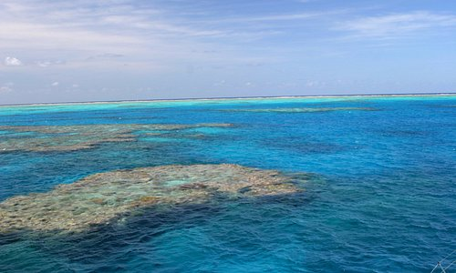 Mornings on the Great Barrier Reef