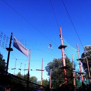 Park linowy widok - na 3 trasy