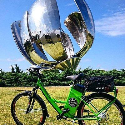Electric Bike Tour - Floralis Generica, Recoleta - www.geoebikeargentina.com