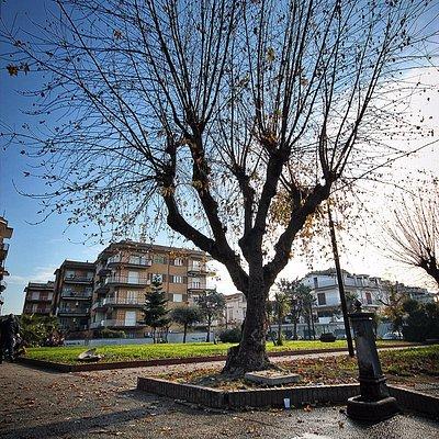 Villa comunale di Frattamaggiore