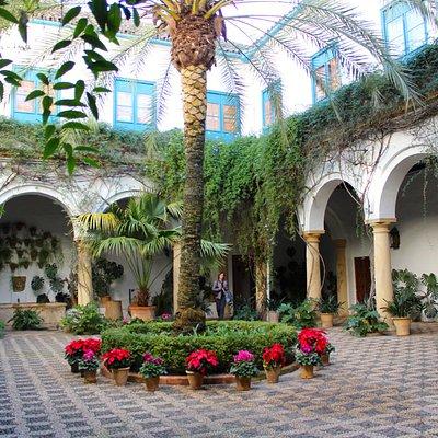 Palacio Museo de Viana