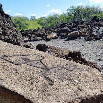 The first petroglyphs along the trail