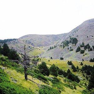 Camí de Manyat