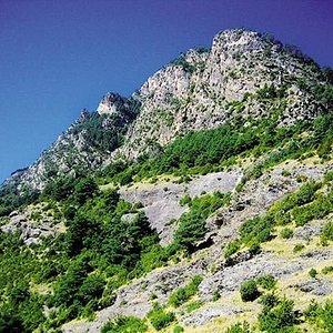 Camí de Rocafort