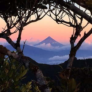 View at sunrise to the Mt. Mayon from summit of Mt. Isarog. Copyright: Axel Possekel