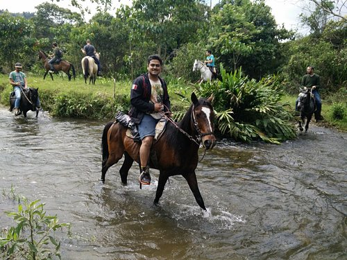 Crossing the river with horses