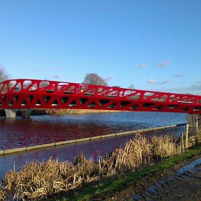 Symbio bridge