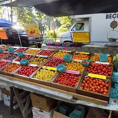 Cherry Tomatoes!!!Variety