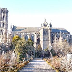La cathédrale Saint-Étienne vue du jardin botanique