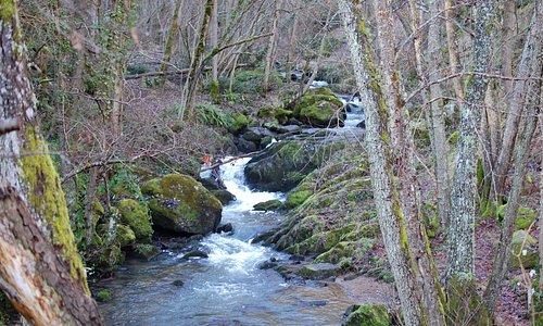 de wandeling naar beneden kwam uit bij een oud bruggetje met een mooie riviertje