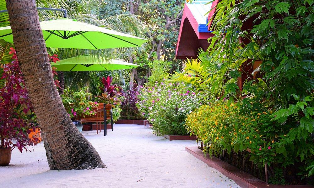 Beach Villa Ukulhas Garden