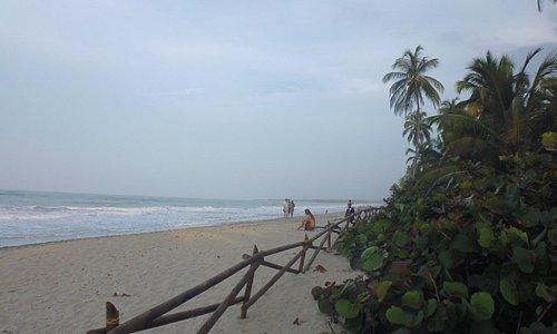 Playas de Palomino