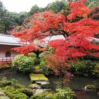 Garten vom Jisso-ji