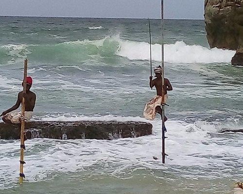 Stilt Fisherman's Weligama Bay Sri Lanka