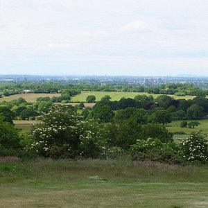 The View from the top of the Beacon