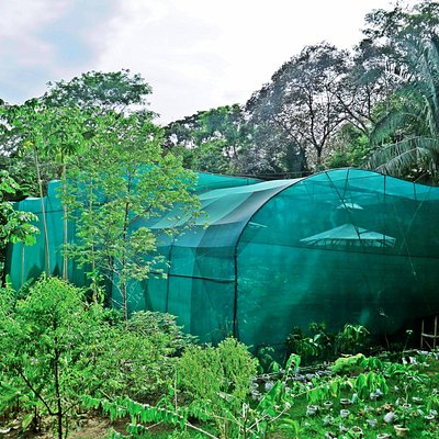 Huge butterfly habitat still being developed, but really cool project!