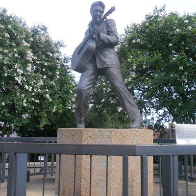Elvis rockin out
